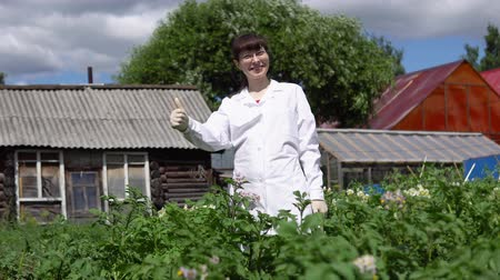 영토 : Young female scientist showing thumb up against a background of potato field. A female technician in a white coat studies the growth of potatoes varieties on the experimental territory of the farmland 무비클립