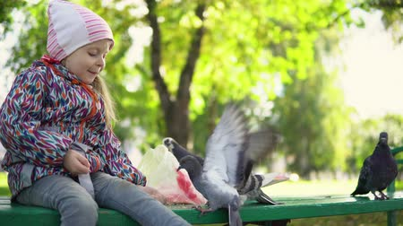 kabuksuz tahıl : Little European girl feeding street pigeons with grain in the autumn park. A happy female kid holds the groats on his palm, the birds are gently eaten from her hands.