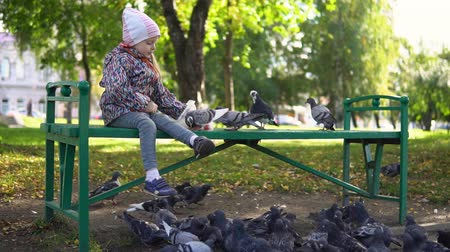 nourishing : Little cute girl feeding street pigeons with grain in the autumn park. A happy child sits on a green bench and throws seeds to the birds, slow motion.