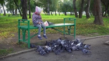 benches : Little European girl feeding street pigeons with grain in the autumn park,slow motion.