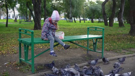 hejno : Little cute girl feeding street pigeons with grain in the autumn park. A happy child sits on a green bench and throws seeds to the birds.