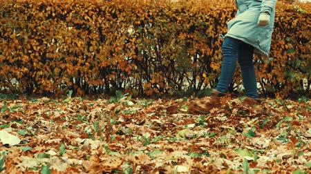 caído : A girl dressed in a parka and brown boots walks on dry, fallen oak leaves in the fall for a walk on the background of red bushes.