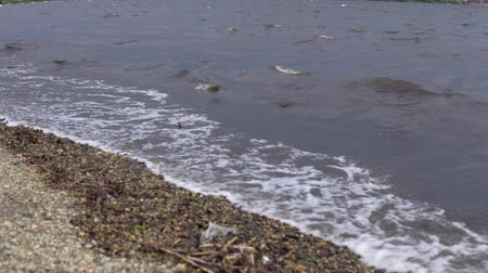 kei : Dark muddy waves with white foam on the pebble beach after the storm. Stockvideo