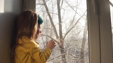 bandaj : A cute little blonde girl with a blue bandage looks out the window at the winter landscape, sitting on the windowsill. An attractive child plays and enjoys the snow outside the window, dolly shot.