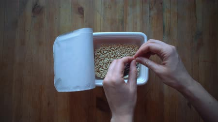 kluski : Top view of cooking instant noodles, female hands pours seasoning from packet into cup with instant noodles on wooden table.