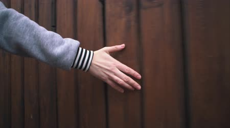 древесный : Camera follows of female hand touches hard rough woody wall on cloudy day. Human runs his hand along brown boards on wooden surface, close up.