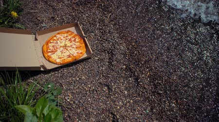 cheese piece : Cardboard box with delicious, fresh, appetizing pizza on pebble beach, small waves roll ashore, space for text. Concept of summer fast food and rest. Stock Footage