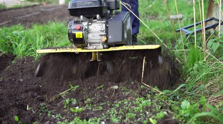 tiller : Close up of tines motorized cultivator rips ground.Farmers legs in black boots are buried in loose soil, preparation for landing. Stock Footage