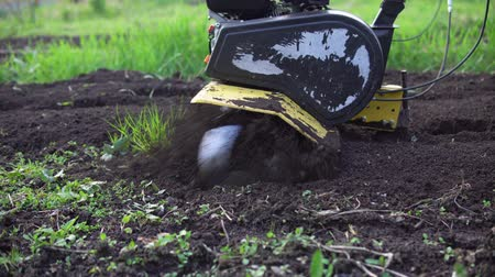 döner : Side view of tines motorized cultivator rips ground.Farmers legs in black boots are buried in loose soil, preparation for landing.
