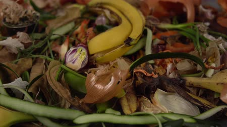 elválasztás : Tracking shot close up of food debris from onions, bananas, cucumbers, carrots, apples, potatoes, herbs. Organic garbage collection for compost pit. Concept of zero waste and caring for environment.