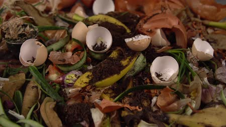 apodrecendo : Tracking shot close up of leftover food from vegetables, fruits and herbs. Someone throws tea leaves and eggshell on top of trash. Concept of zero waste and caring for environment.