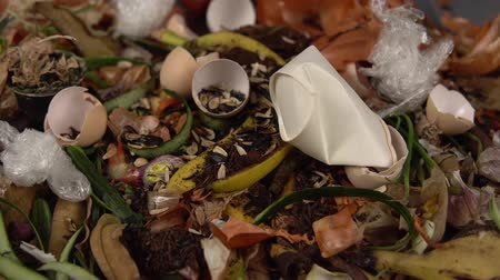 apodrecendo : Tracking shot close up of leftover food from vegetables, fruits and herbs. Someone throws paper cup on top of trash. Concept of zero waste and caring for environment. Stock Footage