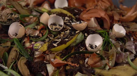 abundância : Tracking shot close up of leftover food from vegetables, fruits and herbs. Someone throws non-woven cloth on top of trash. Concept of zero waste and caring for environment.