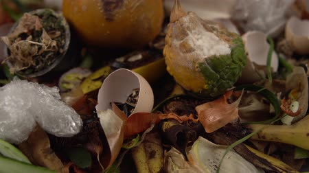 apodrecendo : Tracking shot close up of food debris mixed with inorganic waste. Landfill with unsorted garbage,problems of waste disposal from human activities.