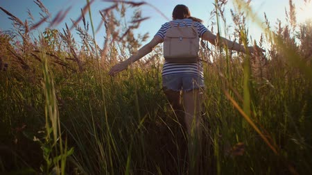 denim : View back of young brunette woman with backpack walks along field among dry grass she touches golden ripe ears of wild herbs with her hands.