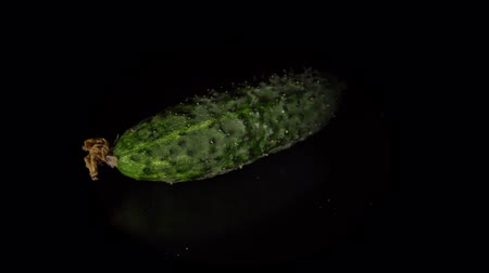 nedvdús : Fresh gherkin rotates on a black background, one small cucumber is reflected in a dark mirror surface, natural vegetables organic food, seamless loops.