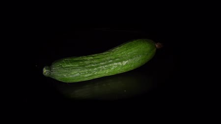 pepino : Fresh cucumber rotates on a black background, one green-skinned fruit is reflected in a dark mirror surface, natural vegetables organic food, seamless loops.