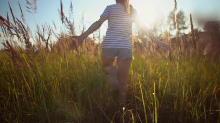 handheld shot : View back of young brunette woman walks along field among dry herbs she touches golden ripe ears of wild grass with her hands. Stock Footage