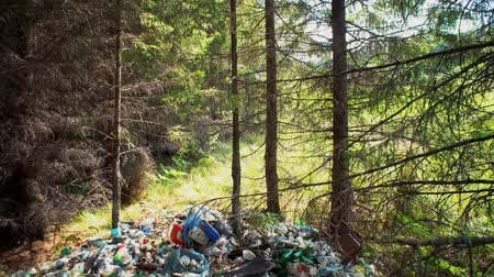 лом : Tilt up of coniferous forest hides huge piles of garbage under branches of trees plastic bottles glass rubber mats metal cans among pine needles and cones. Man-made problems of environmental pollution