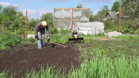 leveling : Female farmer in yellow bandana raises the ground with metal rake with wooden handle on sunny day. Gardener woman loosens the soil preparing for planting. Stock Footage