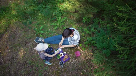 odstín : View from above mother and daughter together on a picnic in the woods. The family sits on the ground in the shade of trees and eats eggs with cucumbers and homemade oatmeal cookies. Dostupné videozáznamy