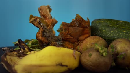 banan : Moldy zucchini rots along with other organic garbage in compost. Ugly fruits rotate against blue background, excessive consumption and violation of storage conditions of vegetables, close-up. Wideo