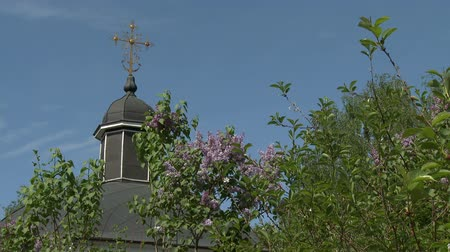 churchyard : Dome of church and lilac bush on sky background