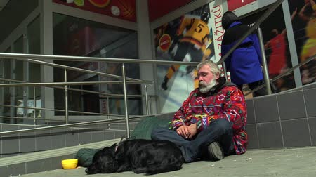 rescue dog : Senior homeless man begging in city, Czech Republic, Europe Stock Footage
