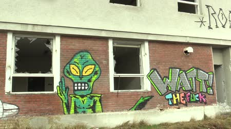 transação : OLOMOUC, CZECH REPUBLIC, JANUARY 18, 2018: Grafitti of the green alien on the abandoned building with the inscription the fuck, broken windows. A very provocative, the authentic of depression