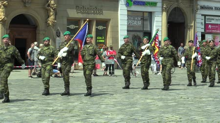 marş : OLOMOUC, CZECH REPUBLIC, JUNE 29 , 2018: The elite army troop of the Czech Republic is armed is coming square, the flag and the emblem of the Czech and the flag of the Army, soldiers with a uniform