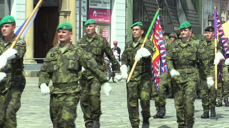 czechoslovak : OLOMOUC, CZECH REPUBLIC, JUNE 29 , 2018: The elite army troop of the Czech Republic is armed is coming square, the flag and the emblem of the Czech and the flag of the Army, soldiers with a uniform