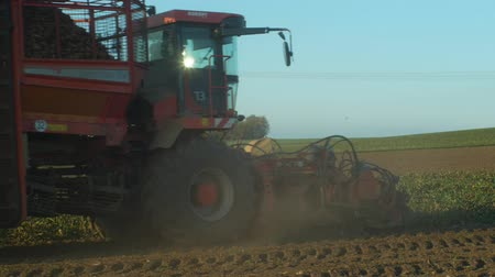 koníčky : OLOMOUC, CZECH REPUBLIC, OCTOBER 27, 2018: Harvesting sugar fresh beet Beta in the field machine, combine harvested , loading conical tubers ripe root, loader from a large pile, Europe