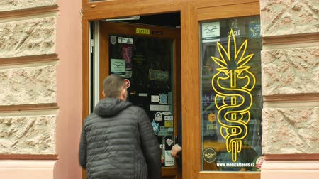 dope : OLOMOUC, CZECH REPUBLIC, JANUARY 2, 2019: Shop hemp cannabis, also sells seeds products, storefront shop with cannabis marijuana symbols, people are entering the store, sale of bong