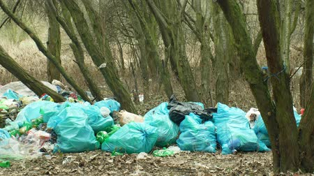guba : OLOMOUC, CZECH REPUBLIC, JANUARY 2, 2019: Rubbish in forest landscape in endangered nature, black dump waste of human dirt and garbage plastic of various kinds, bags full of trash refuse litter