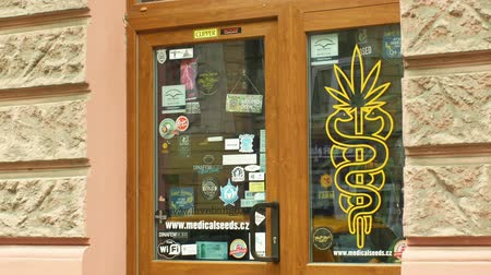 dope : OLOMOUC, CZECH REPUBLIC, JANUARY 2, 2019: Shop medical hemp cannabis, also sells seeds products, storefront shop with cannabis marijuana symbols, people are entering the store, sale of bong