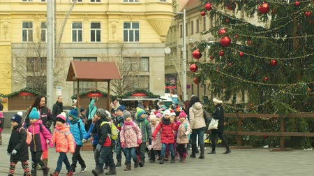 domingo : BRNO, CZECH REPUBLIC, DECEMBER 21, 2018: Christmas tree luminous and shines beautiful decorated with golden ornaments and flasks red big, childrens kindergarten goes over the road