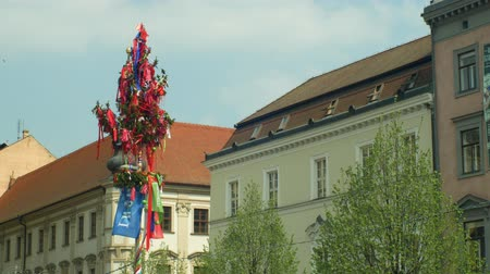 team bulding : BRNO, CZECH REPUBLIC, MAY 1, 2019: Maypole tree Easter folk with ornaments of tradition, people walking in square Svodody, city life street may, bulding cultural monument and a tourist attraction