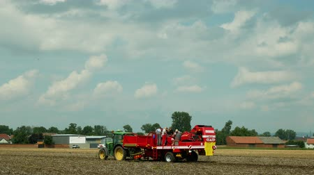 trator : OLOMOUC, CZECH REPUBLIC, AUGUST 9, 2019: Potato harvesting in the field with a special harvester machine Grimme modern equipment with people farmers sorting potatoes and tractor John Deere, Europe