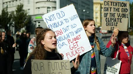 BRNO, CZECH REPUBLIC, SEPTEMBER 20, 2019: Friday for future, demonstration against climate change, banner detention isnt the end of the world climate crisis is, students crowd ecology Wideo
