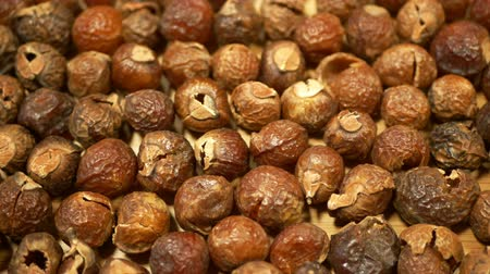 psoriasis : Soap nuts Indian soapberry or washnut, Sapindus mukorossi reetha or ritha from the soap tree shells are used to wash clothes to put in drum washing machines. Nuts contain saponin plant fruit seeds