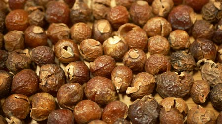 lice : Soap nuts Indian soapberry or washnut, Sapindus mukorossi reetha or ritha from the soap tree shells are used to wash clothes to put in drum washing machines. Nuts contain saponin plant fruit seeds