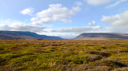 The Mountain Valley on the way in north of iceland Stok Video