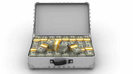 sarıcı : Opening suitcase filled with packs of US dollars Stok Video