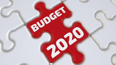 Budget 2020. The inscription Стоковые видеозаписи