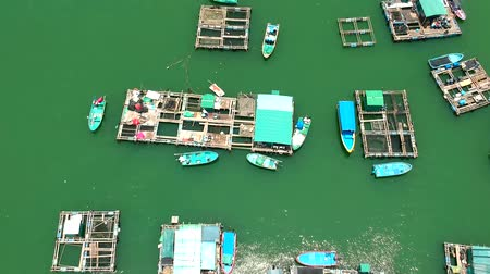 zattera : A fish farm near the Ma Wan Island as viewed from a quadcopter Filmati Stock