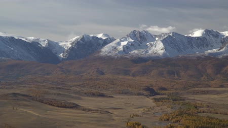 wilds : Beautiful panoramic shot of snowy Altai mountains peaks.