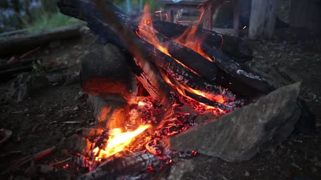meşale : Night campfire with available space at left side. Stok Video
