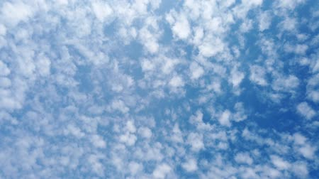 meteorologia : Blue sky  background cumulus cloud  through growth seamless computing Time lapse nature rolling puffy soft giant oxygen like cotton moving huge white Puffy cloud fluffy  tropical natural sunnyday