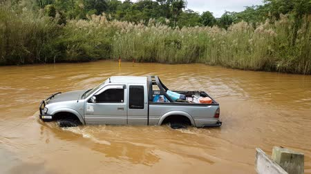 floods : Ratchaburi,Thailand -Dec 4,2016: Four-wheel drive pickup truck were wading across the river in the forest. Stock Footage
