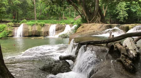 The beauty of the waterfall and the moisture of the trees in the rainy season.